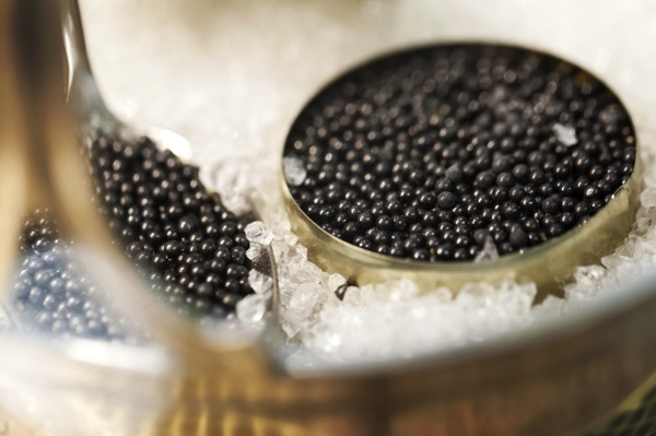 A can of Russian black caviar